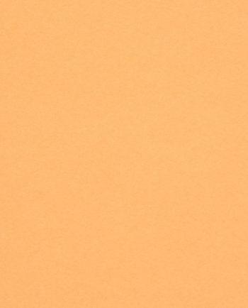 Pop´Set Apricot