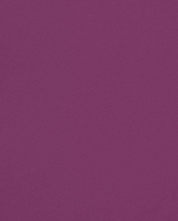Curious Skin Purple