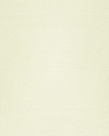Modigliani Bianco
