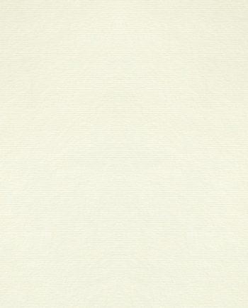 Dalí Bianco