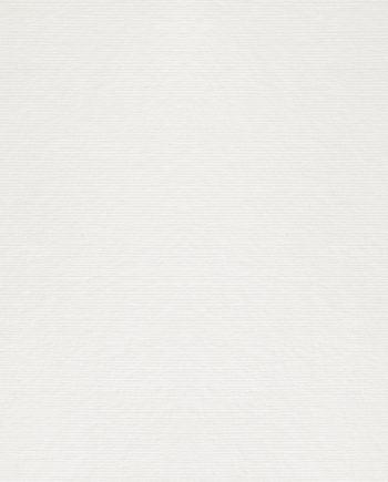 Dalí Neve