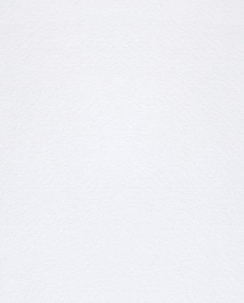 Modigliani Candido